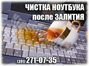 Чистка ноутбука после попадания жидкости в Красноярске.